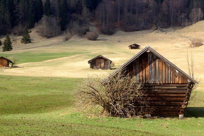 Naturfotografie: Buckelwiese